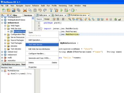 netbeans web service from wsdl example