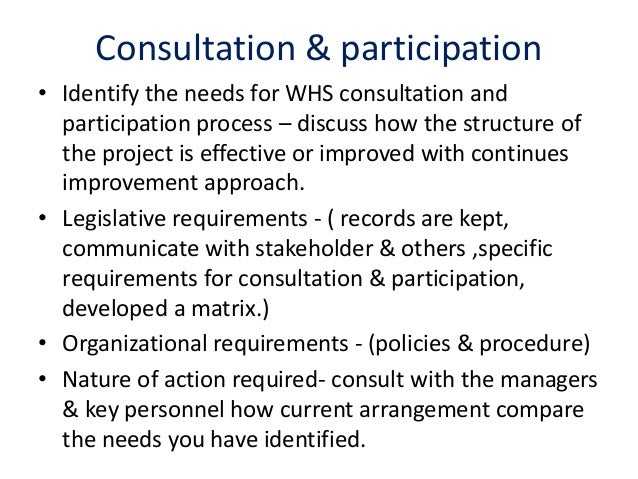 example of organizational whs policies procedure or programs