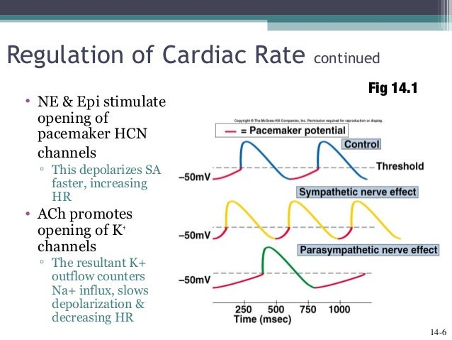 how to calculate cardiac output example