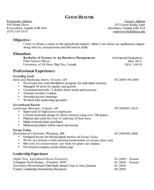 example career goals for resume