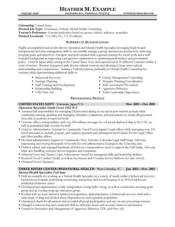 cover letter for government example