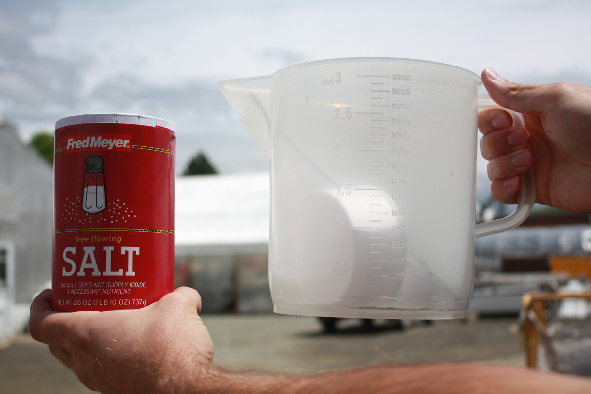 salt dissolved in water is an example of a