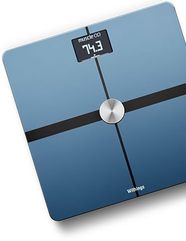 an example of body composition