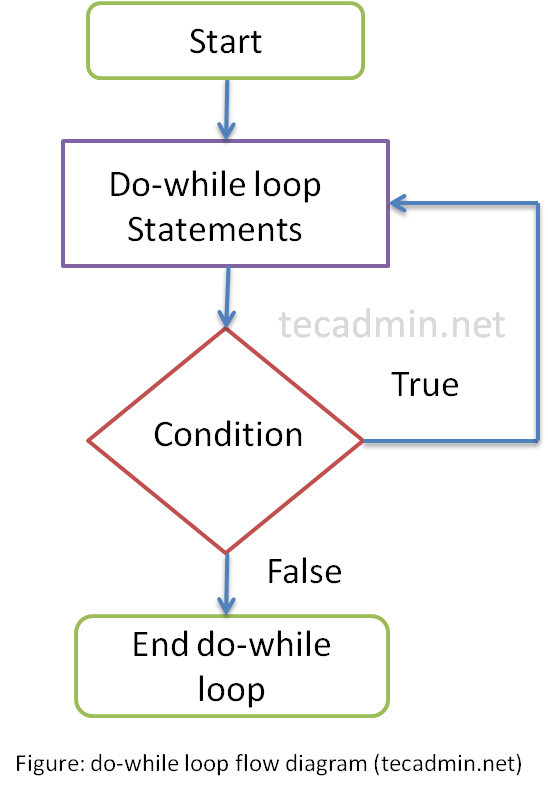 do while loop example c++