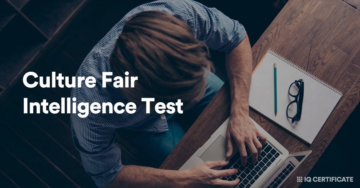 culture fair intelligence test example