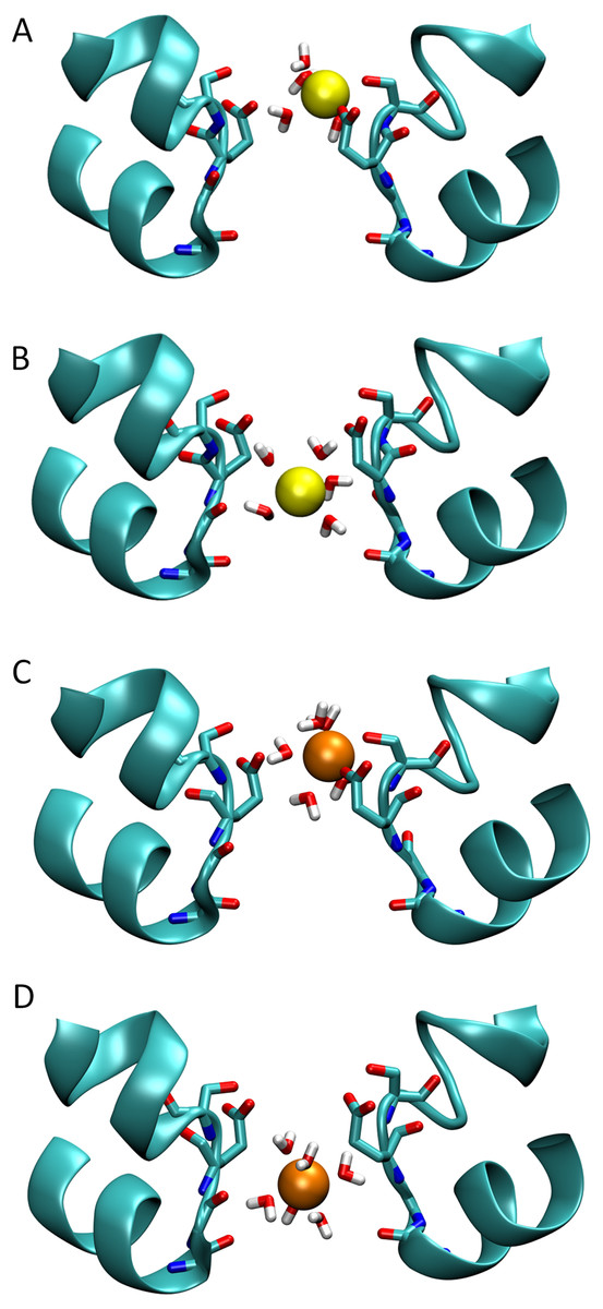 example of a bacterial ion channel and the bacterium